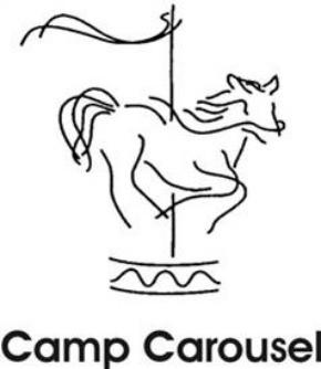 camp carousel hospice winston-salem