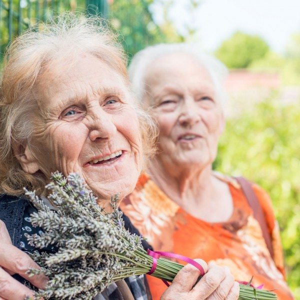 trellis supportive care volunteer